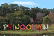 myanmar-insider-pyin-oo-lwin