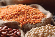 The-Promising-Market-for-Myanmar's-Beans-and-Pulses