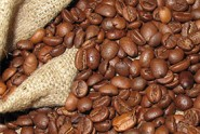 A-New-Light-for-Myanmar's-Coffee-Industry-to-Shine-in-Foreign-Market