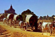 Bagan-Celebrates-Ananda-Festival